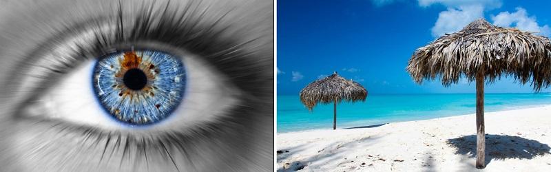 Vienadieniai lęšiai – malonesnė vasara akims?