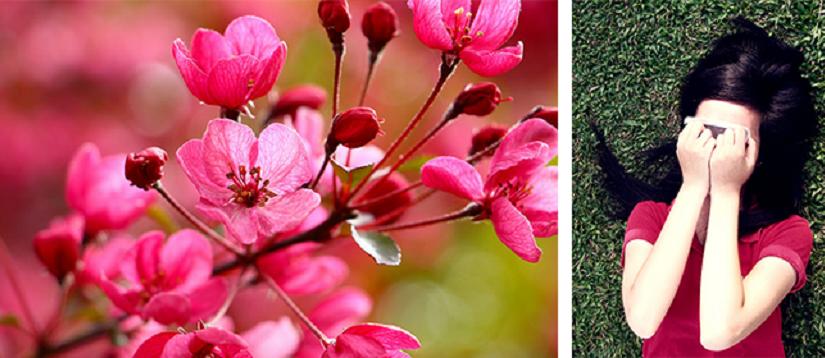 Sezoninė akių alergija – pavasario šauklys?
